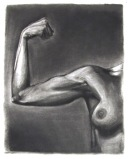Carole's reduction charcoal