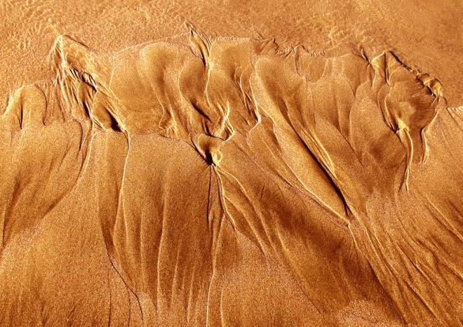 2014 oregon texture 8gold2web1000